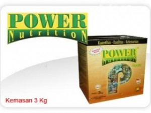 power-nutrition-besar-300x210